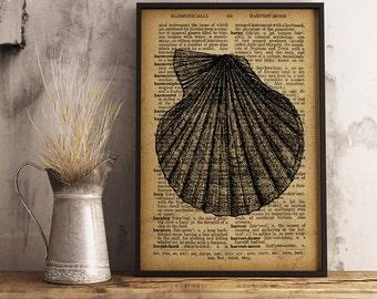 Shell Print, Beach House decor, Nautical Decor, Antique Shell Illustrations, Beach Wall Art, Nautical Wall Decor, Sea life art print (KR09)