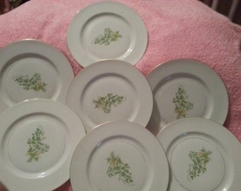 Marked Down - Need to sale!  Frederik Lunning Inc of New York - Fine China plates - 7 in this set