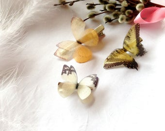 3 Butterfly Hair-Clips for amazing hairstyle