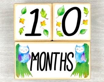 Baby Age Blocks - Baby Milestone Blocks - Pregnancy Photo Prop - Woodland Animal Nursery - Gender Neutral Gift - Baby Shower Gift - Newborn