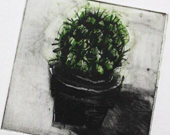 Cactus Monoprint - Multi Plate Coloured Print