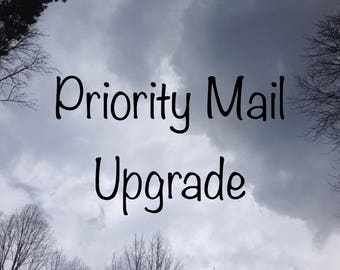 1-3 day priority mail upgrade