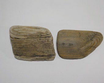 2 Small Chunky  Driftwood Pieces 7-16cm/2-6'', Lovely Shaped Driftwood Beach  Decor, Decorative Driftwood  #289