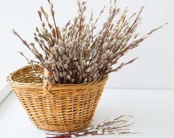 Bouquet.Palm seals, 100 willow branches, Spring décor, natural material