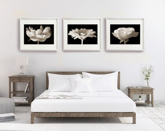 Set of Large Prints, Flower Photographs, Floral Wall Art, Black and White Flowers, Set of 3 Prints, Bedroom Wall Art, Nature Prints, Sepia