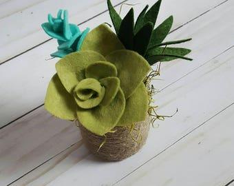 Felt succulent arrangement in a twine covered metal pot, succulent arrangement, felt succulent garden, felt succulent decor