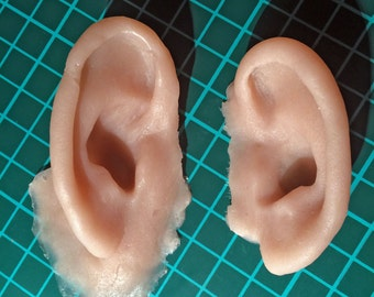 Left and right severed ears