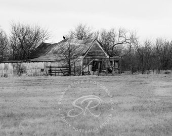 Decaying Barn With Buzzard, Fine Art Print