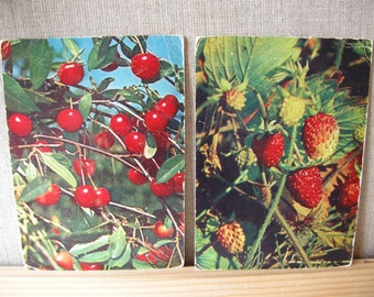 Berries Vintage postcards Set of 2 soviet postcards Berries Russian postcards Cherry and Strawberry Photo Berries soviet postcards 1969
