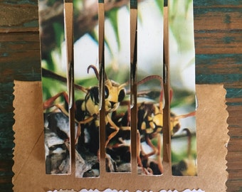 Wasps on Peg Fridge Magnets (one-of-a-kind)