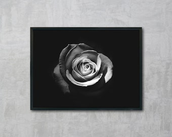Rose, Rose Print, Black and White Photography, Wall Art Printable, Instant Download, Modern Art, Digital Print
