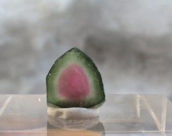 4.15 ct watermelon tourmaline slice from Kunar, Afghanistan C17