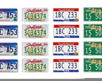 scale model car South Dakota license tag plates