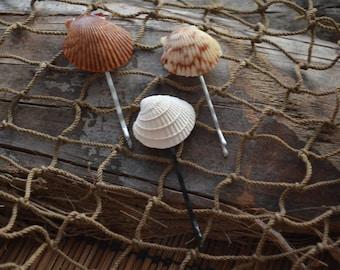 Seashell bobby pins