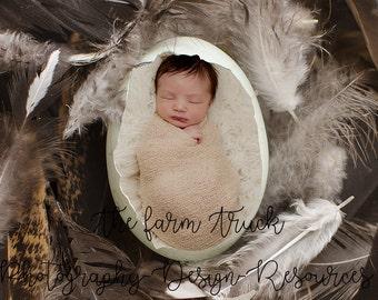 Newborn Digital backdrop, newborn background, egg background, feather backdrop, boy, girl, 2 files, photography background, Farm background