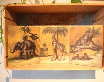 Three paintings: animals of Africa