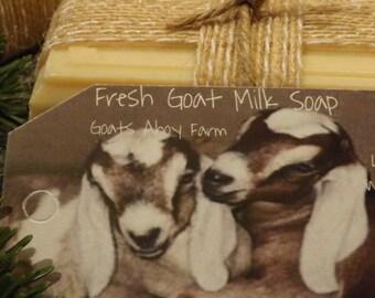 Pink Grapefruit Fresh Goats Milk Soap w/ Shea Butter for Sensitive Skin