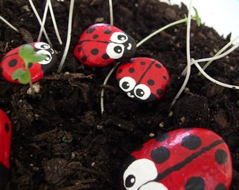 5 Red Ladybug Painted Stones - Garden Accent -  Painted Rocks for Children - Birthday Gift Idea