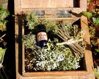 13 Blackthorn / Witch Pins - Oak Moss - and Protection Oil in a box for Spell Work, Ritual, Cursing Hexes, Pagan, Wiccan, Witchcraft.