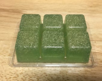Soap on the Go, Gym Bag, Travel Soap Cubes