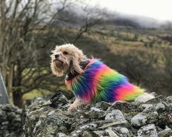 Rainbow fur dog jacket
