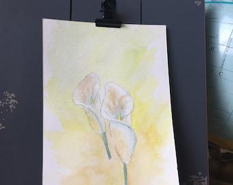 Watercolor- Calla Lillies