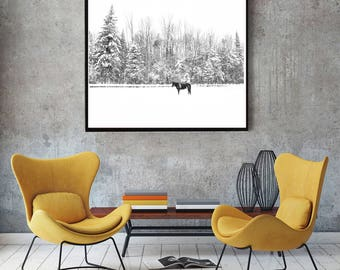 Horse, winter season, snow and snowflakes, tree, western equine home decor black and white Photography download, majorie