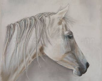 Grey Horse - Fine Art Signed Giclee Print of Original Pastel Painting