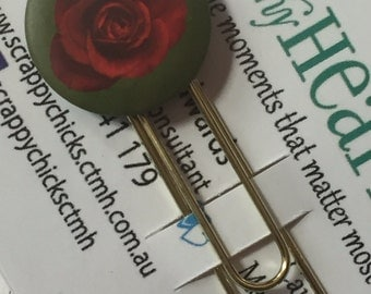 Red Rose on Green Badge Clip