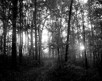 Black and White Sunrise.