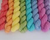 Soul Of A Unicorn Shelley fingering weight 100% wool mini skein set