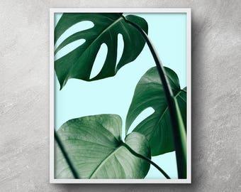 Leaf print, Plant prints, Monstera, Printable wall art, Botanical print, Botanical art, Tropical leaf print, Digital download, Wall art