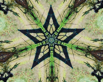 """Tapestry """"Photosynthesis"""""""