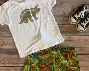 Toddlersaurus Set