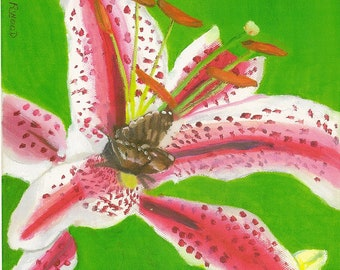 Print of Azalea with Butterfly Painting