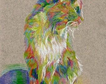 Custom Hand-Drawn Rainbow Illustration