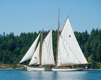 "Photo card for greetings or notes // Seascape San Juan Islands Washington Windjammer Sail Sailboat Boat ""Schooner Zodiac"" SJG-20"