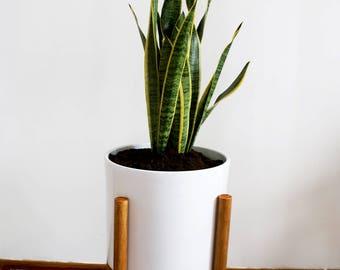 Retro mid century plant stand framework