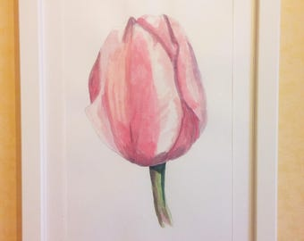 Pink Tulip-drawing on cardboard in mixed media on cardboard-acrylic painting and Watercolor-Painting with wooden frame