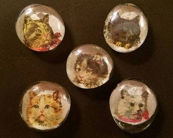 Glass Cat Magnets