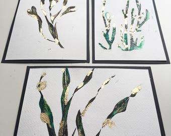 Green Seaweeds