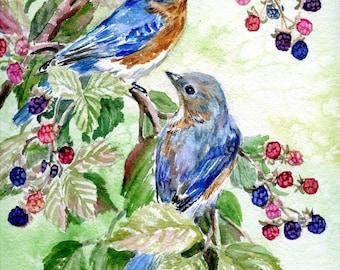Bluebirds and Blackberries
