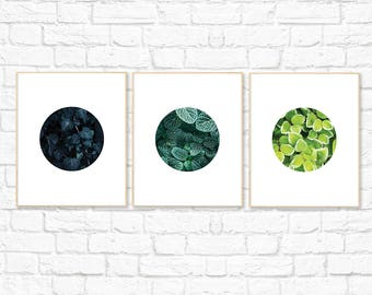 Leaf Print Set, Nature Photography, Leaf Print, Botanical Print, Green, Home Decor, Minimalist Printable Digital Wall Art, Instant Download