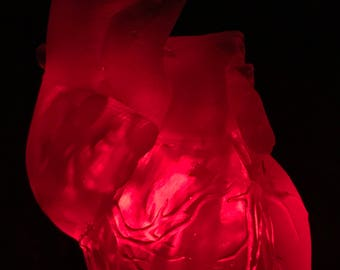 3D Printed, LED Illuminated Human Heart