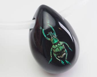 Black egg shaped lucite necklace with real beetle