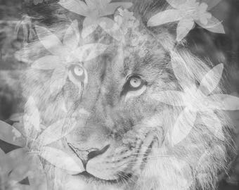 Fine Art Print, Lion Art, Double Exposure Print, Flowers, Black and White Photo, Animal Print, Zoo Art, Jungle, Small Art, Square Art