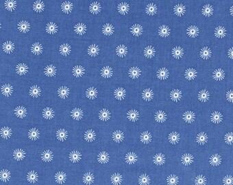 Cotton + Steel Kujira - sea urchin - marine - fat quarter