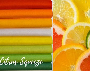 NEW *** Citrus Squeeze Collection, Wool Blend Felt, Wool Felt Sheets, Wool Felt Fabric, Felt Fabric Bundle, Wool Felt Bundles Collections