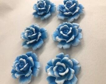 Vintage  Flower Cab Blue Detail carved FROSTING plastic