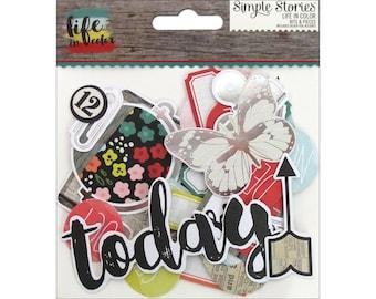 Life In Color Bits & Pieces Cardstock Die-Cuts 78/Pkg Paper Ephemera Simple Stories (5029)